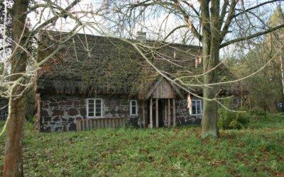 Puszcza Pyzdrska i domy z żelaza